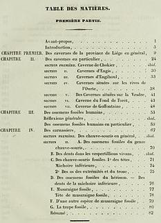 Recherches_sur_les_ossemens_fossiles_découverts_dans_les_cavernes_de_la_province_de_Liège_BHL43577227